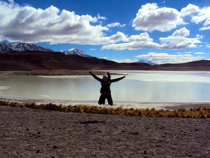 Bolivian desert